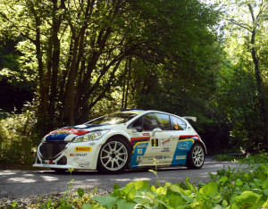 Paolo Andreucci, Anna Andreussi (Peugeot 208 T16, #3) Racing Lions;