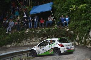 Roberto Vellani, Alice De Marco (Peugeot 207 S2000 #6, Power Car Team)